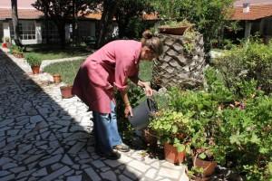 Jardinagem 2